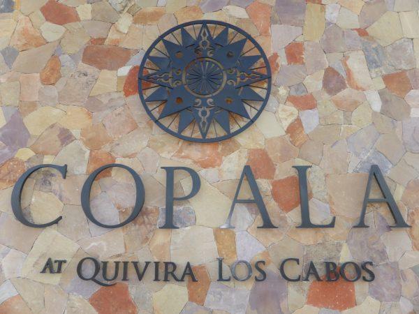 copala-2017-01